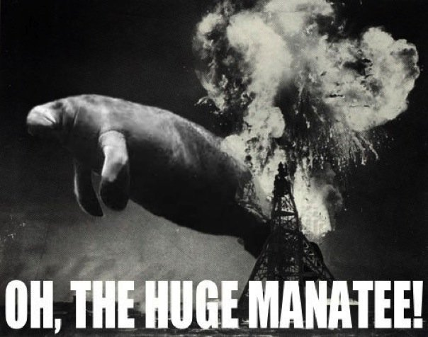 Uncle Manatee