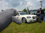 Manatee shows Freaks of Nature some respect